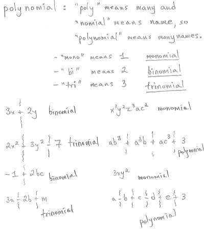 Freemathtutoring Naming Polynomials Examples Part Of The Official